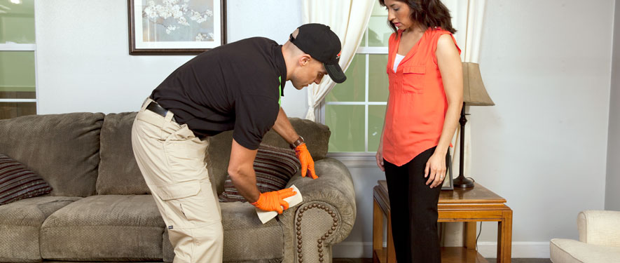 Durham, NC carpet upholstery cleaning